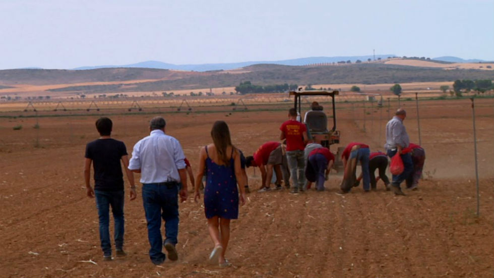 Aquí la tierra - Plantando ajos ¡a mano!