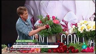 A punto con La 2 - Flores - Plantas para pintar