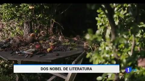 Ir al VideoLa polaca Olga Tokarczuk y el austríaco Peter Handke, Premios Nobel de Literatura 2018 y 2019