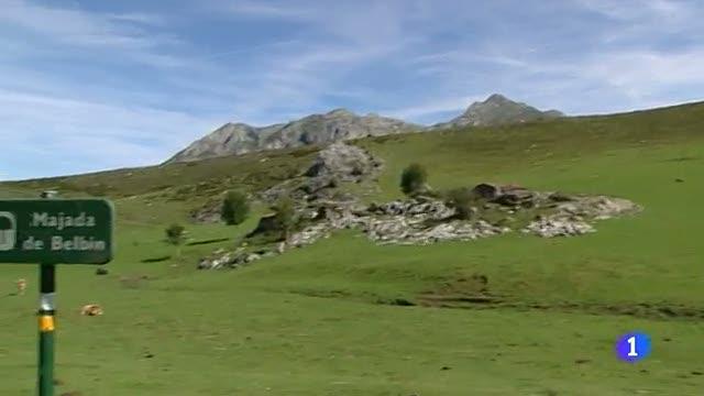 Ir al VideoPolémica en Asturias por la matanza de lobos ibéricos
