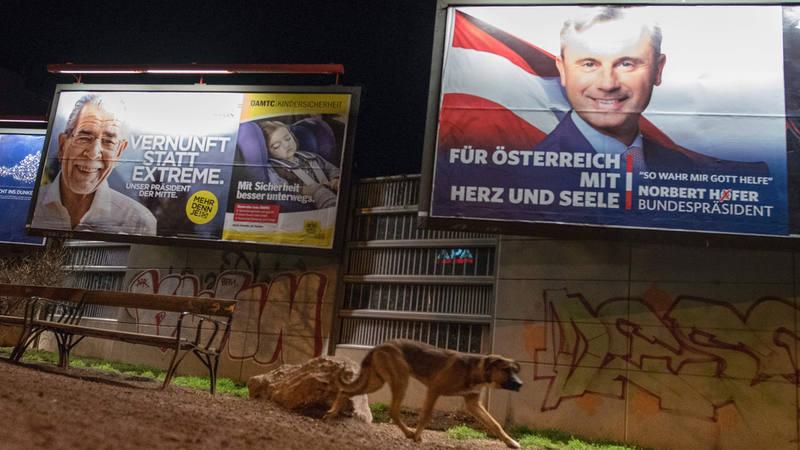 Pósters electorales de los candidatos a la presidencia austríaca Norbert Hofer y Alexander Van der Bellen.