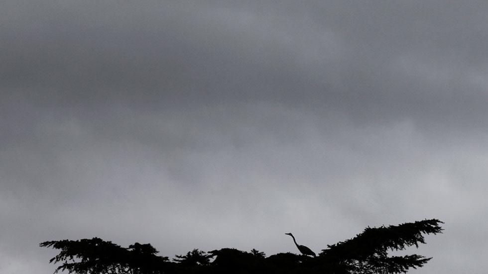 Precipitaciones fuertes en Canarias