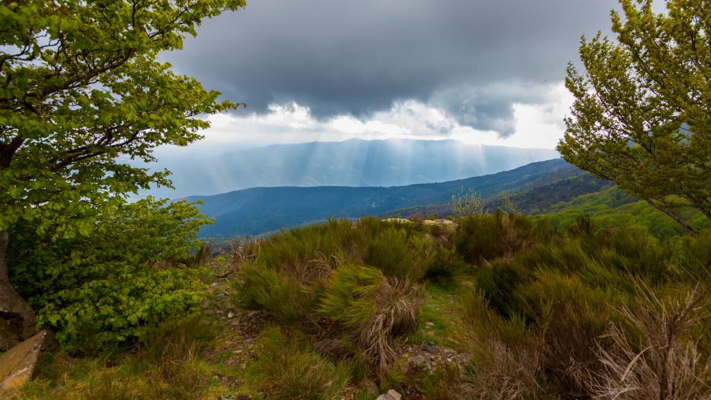 Precipitaciones fuertes, viento fuerte y temperaturas diurnas en descenso