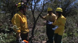 Aquí la tierra - Prevención de incendios