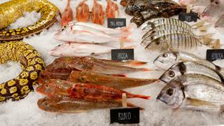 MasterChef 4 - #RetoMasterChef: Cocina una receta con pescado