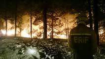 Ir al VideoRiesgo extremo de incendios forestales en casi toda España
