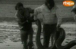 """Ver vídeo  'Rodaje en 1973 de la serie """"El Hombre y la Tierra""""'"""