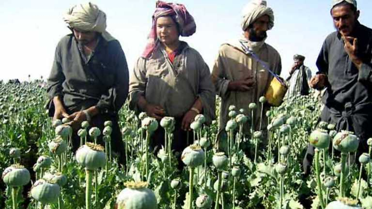 La noche temática - La ruta del opio afgano