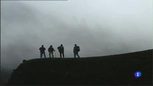 Aulaga - Ruta de los Volcanes - La Palma