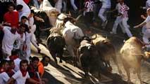 Dos corredores heridos por asta de toro en el 7º encierro