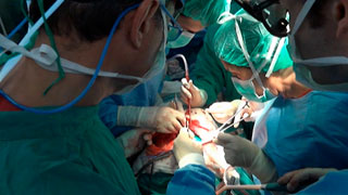 Se celebra el Día del Donante con España a la cabeza de donaciones y  trasplantes