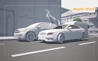 'Seguridad Vital' - Restricciones de velocidad en zonas con riesgo de atropello