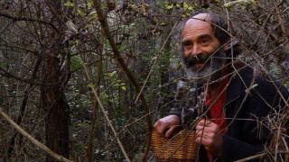 Aquí la tierra - El Señor de los bosques y los enigmas de la naturaleza