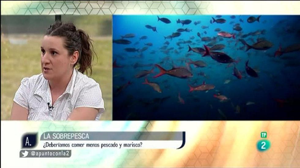 A punto con La 2 - Proyectos solidarios - La sobrepesca