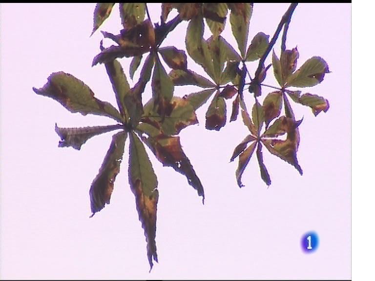 El tiempo en Asturias - 04/10/17