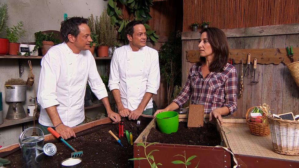Monta tu huerto urbano en casa for Monta tu cocina