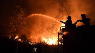 Tras 5 días luchando contra el fuego, en Portugal dan por controlados los últimos incendios