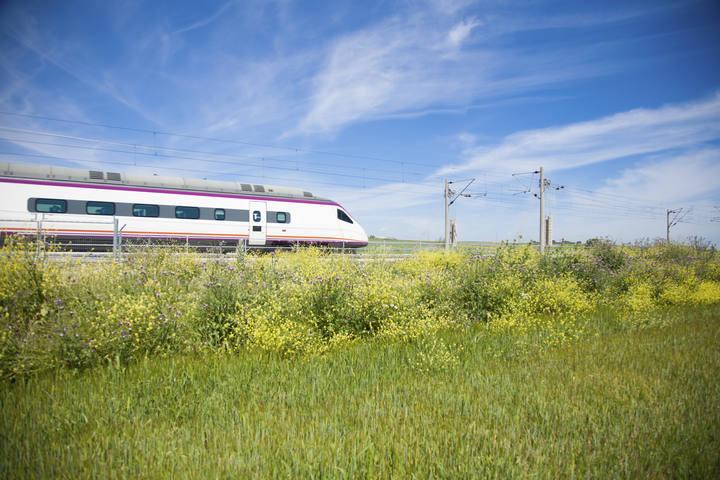 Tren de alta velocidad (Archivo)