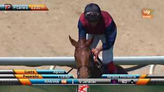 Turf - Carreras de caballos - 13/05/12