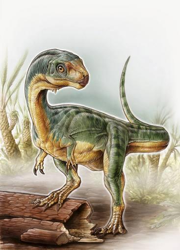 University of Birmingham handout illustration shows an artist's depiction of the Chilesaurus diegosuarezi
