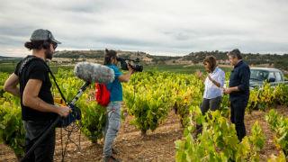 Aquí la tierra - El vino de 2028