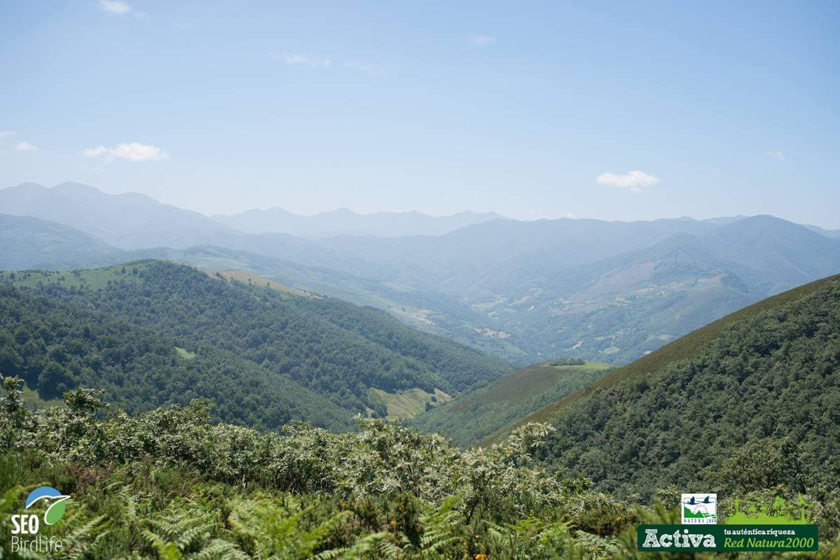 Una vista de la fuentes del río Narcea y del Ibías, en Asturias
