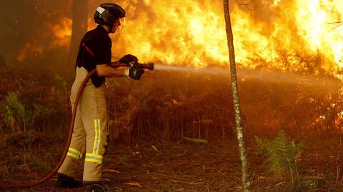 Ir al VideoLa Xunta confirma que los incendios que amenazan Vigo han sido provocados