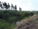 Ir a Fotogaleria Proyectos para aprovechar el agua en Wukro (Etiopía)