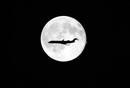 Ir a Fotogaleria La luna azul, un fenómeno que ocurre cada 3 años, vista desde distintas partes del mundo