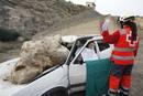 Ir a Fotogaleria Simulacro de terremoto en Murcia