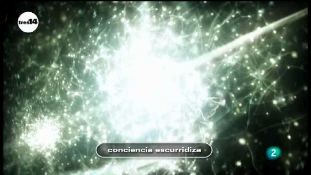 tres14 - conciencia - Ver ahora