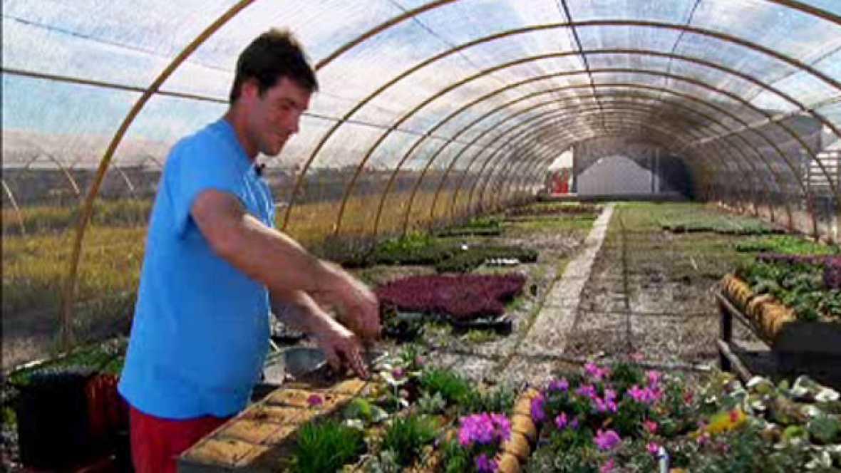En movimiento con jardiner a en la fundaci n carmen - Jardineria la font ...