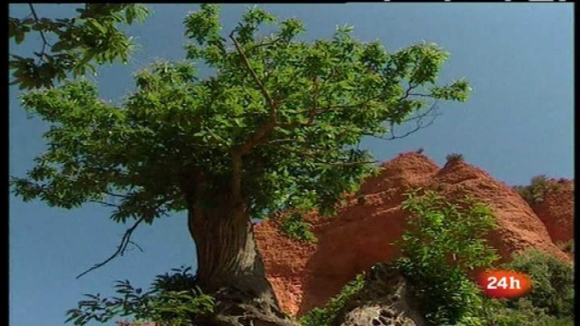 Zoom Tendencias - El Bierzo. Las manos, protagonistas - 21/05/11  - Escuchar ahora
