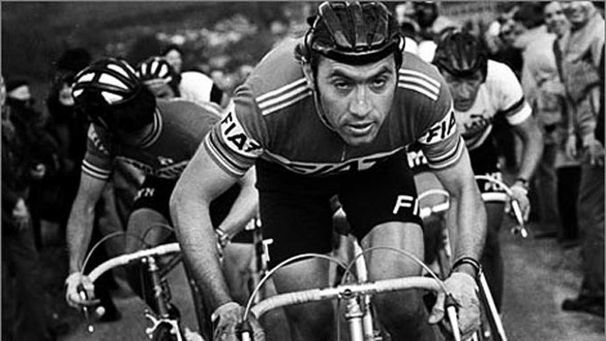 La carrera ciclista de Eddy Merkx se inició el 16 de julio de 1961, en Leken. En 1964 consiguió su primer título importante al ganar el Campeonato del Mundo amateur. El 1 de mayo de 1965 dio el salto al ciclismo profesional, en el que acumuló un abul