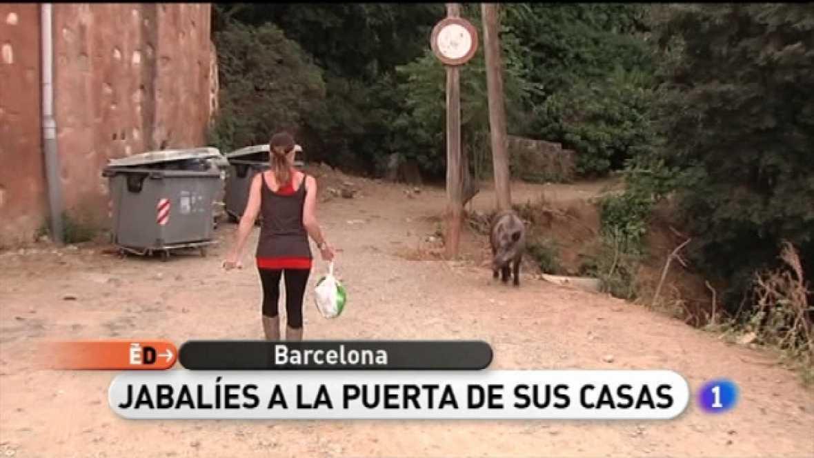 España Directo - 23/06/11 - Ver ahora