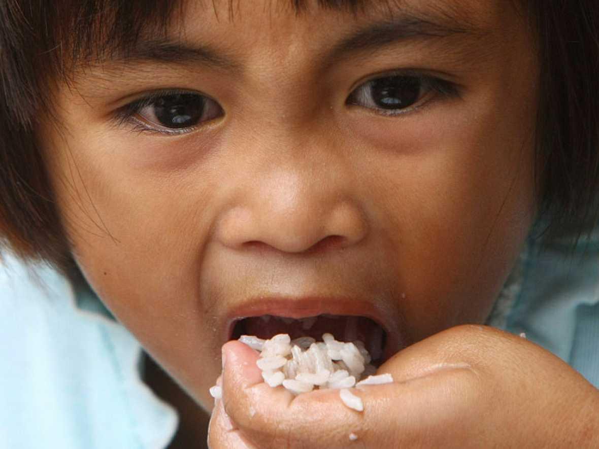 Aumento del hambre crónico y de las hambrunas