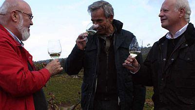 Un país para comérselo - Ourense, una de romanos en un bosque animado - Ver ahora