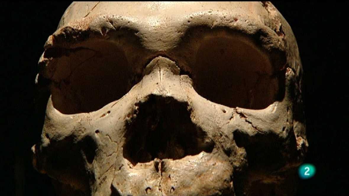 Extras DVD - Museo de la evolución humana: memoria del futuro - VER AHORA