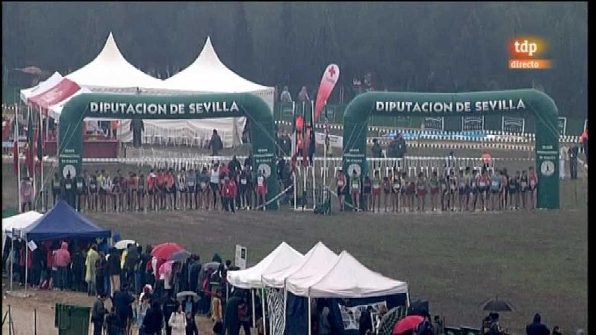 Cross Internacional de Itálica - Carrera masculina - 15/01/12 - Ver ahora