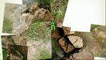 El escarabajo verde - La erupción del Teneguía -Avance