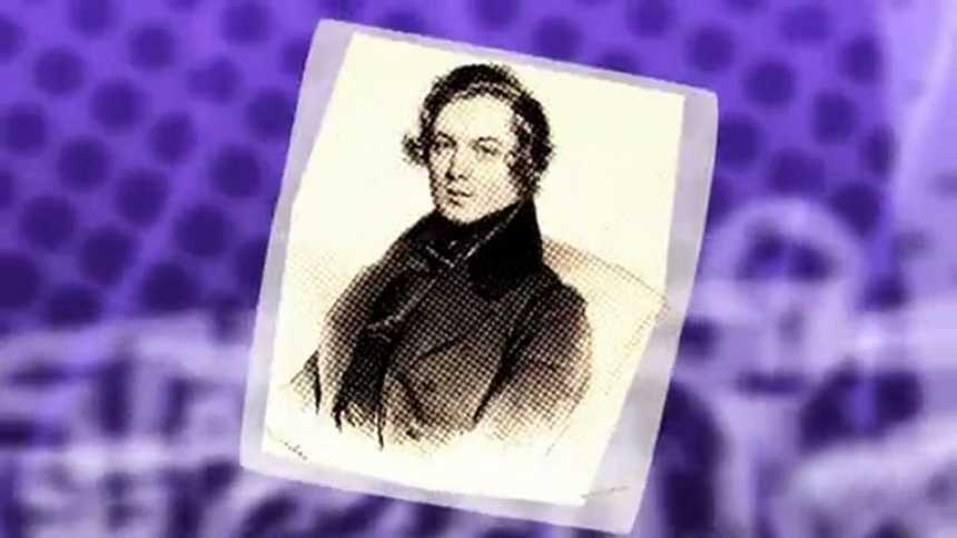 Pizzipedia: schumann