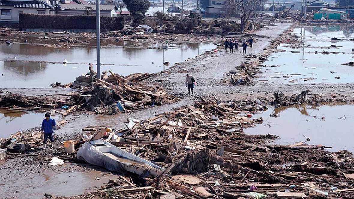 Vida submarina tras el tsunami de Japón