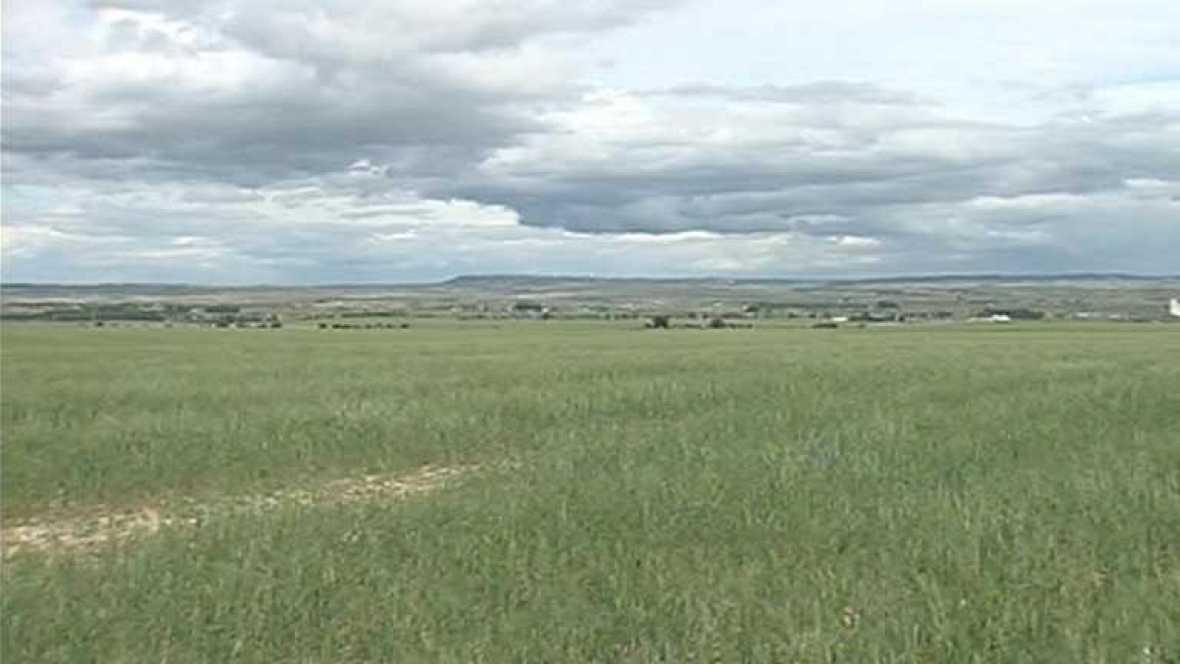 La sequía es uno de los grandes problemas medioambientales