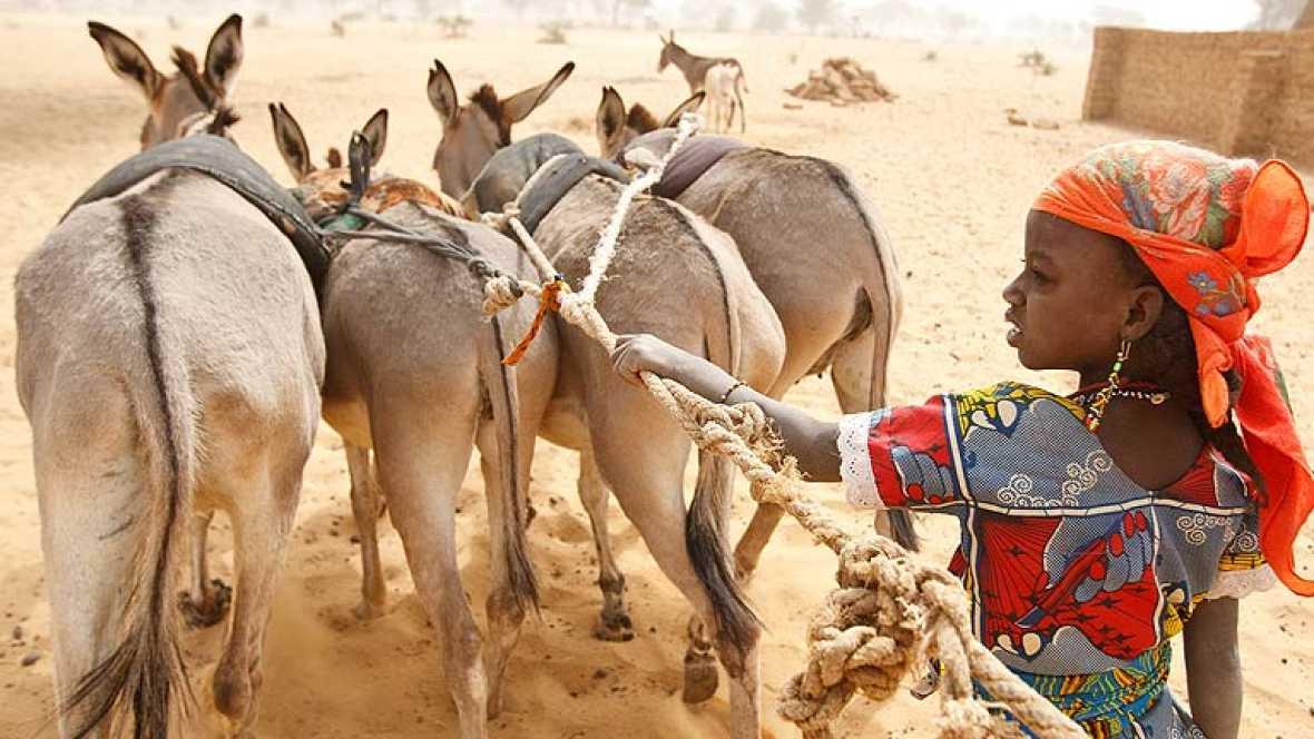 Acabar con la hambruna en el Sahel