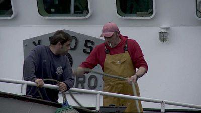 Se descartan más de un millon de toneladas de pescado cada año en toda Europa