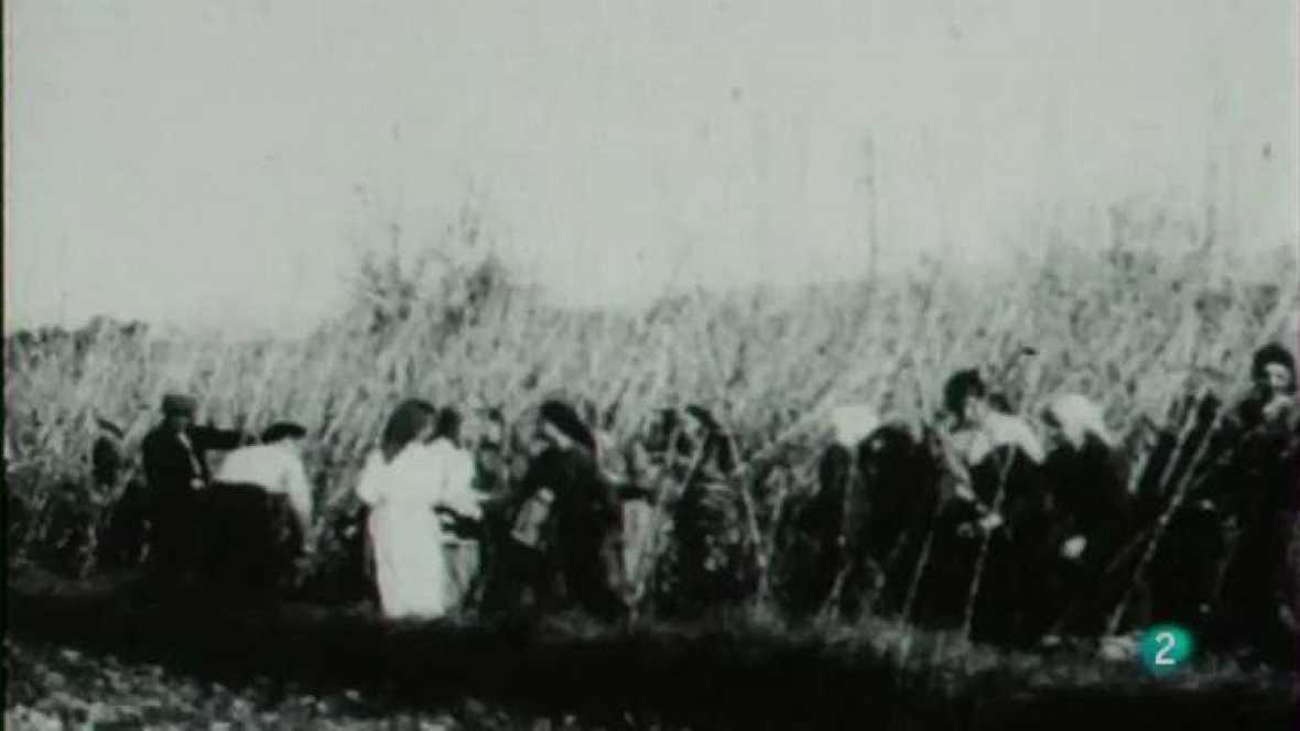 Moments - Diferents aspectes del camp i l'agricultura catalanes.
