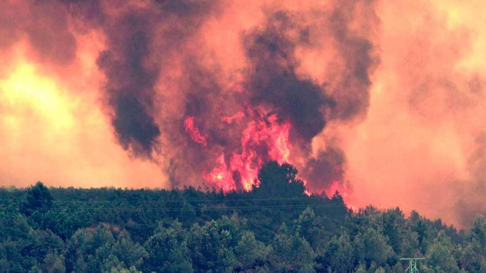 En Valencia, miles de personas luchan contra el mayor incendio de su historia