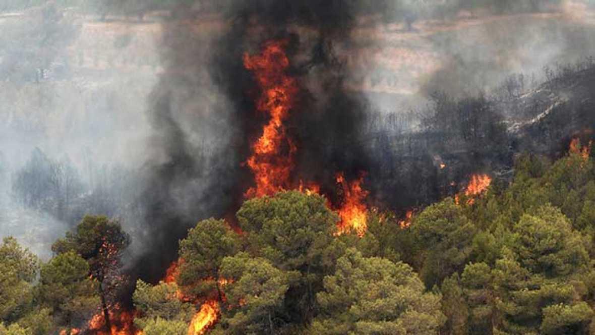 La provincia de Valencia sufre un verdadero desastre ecológico