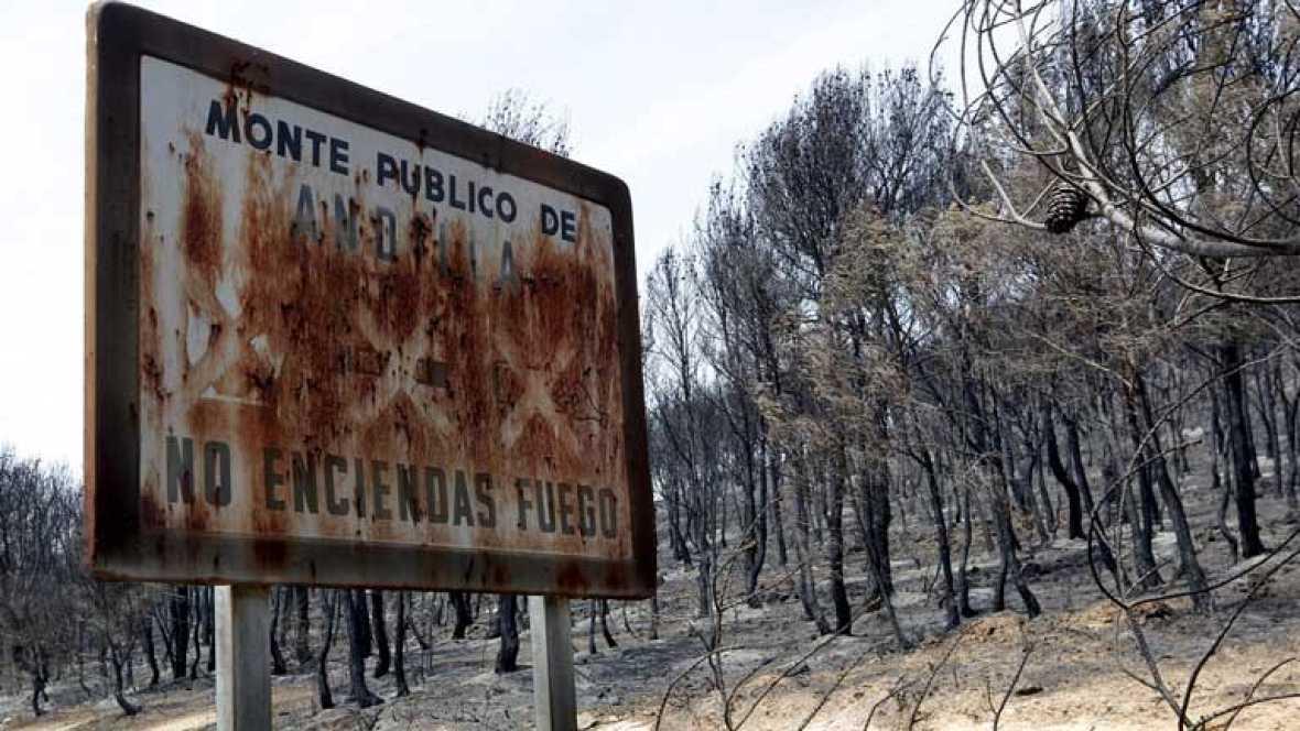 Estabilización del incendio en Valencia