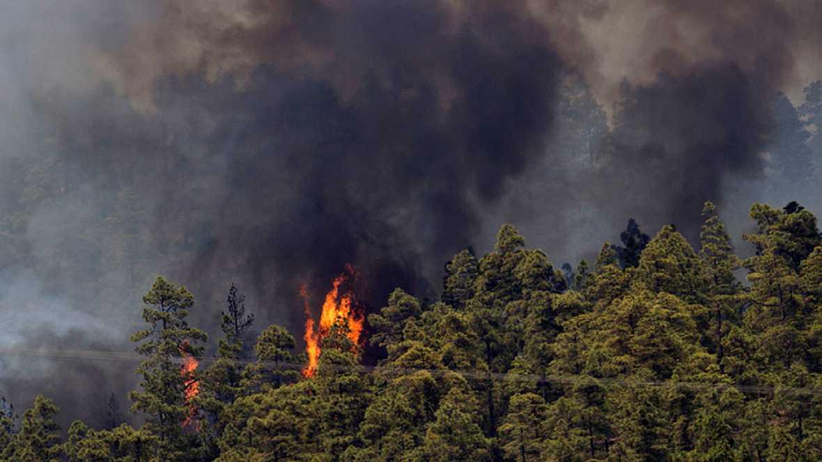 Incendio en la Palma y Tenerife, el fuego amenaza al Parque Nacional del Teide